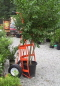 Where to rent TREE CART, LG    30  BALL in Flemington NJ